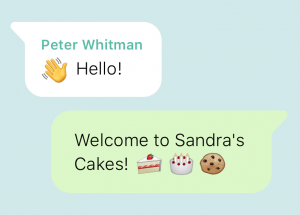 WhatsApp e-commerce integration | Automated Welcome Message